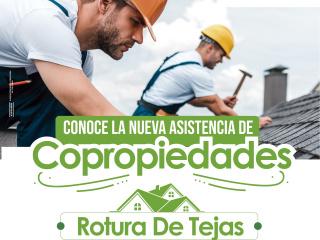 ARTE_POST_ROTURA_DE_TEJAS_01-min